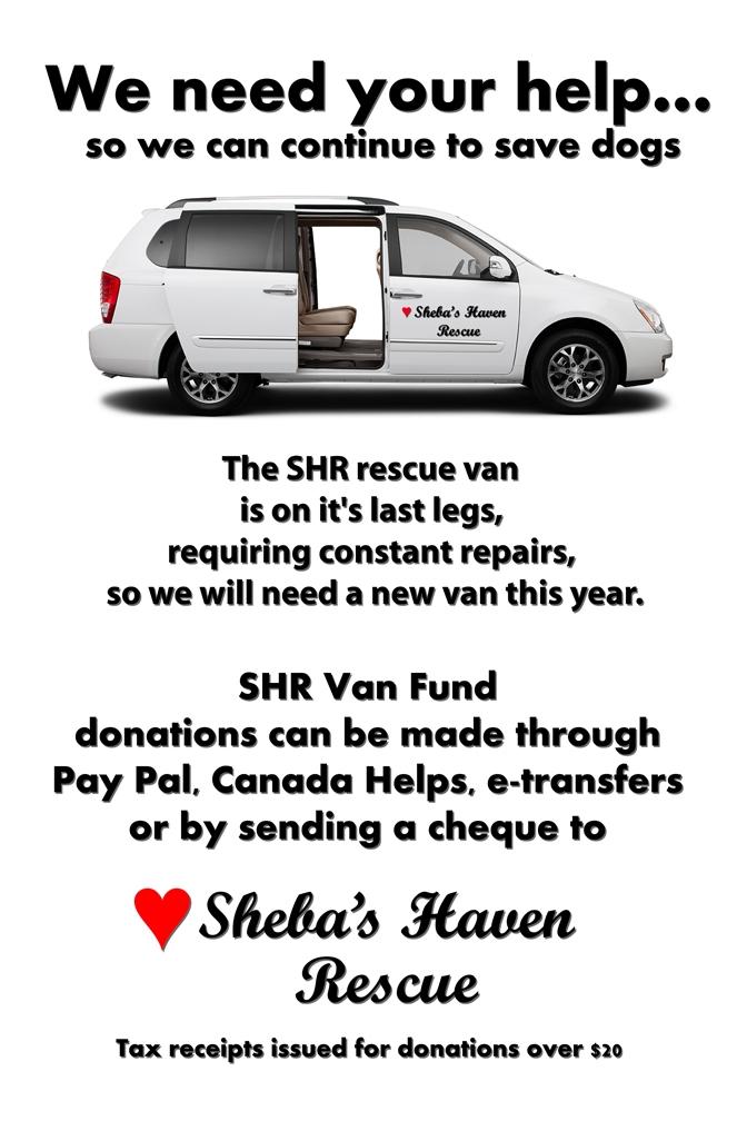 SHR-Van-Fund-Poster-JPG